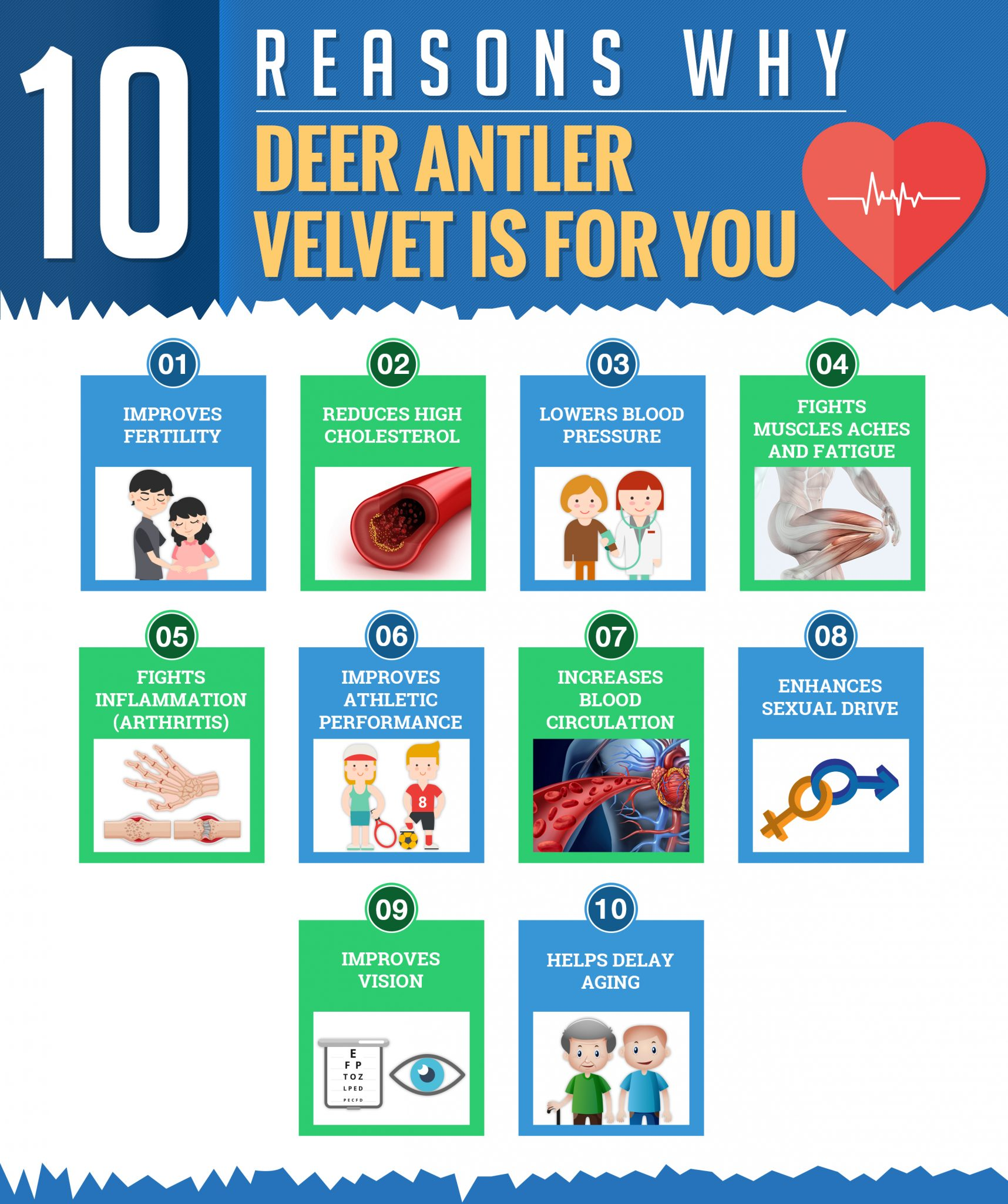 deer antler velvet health benefits