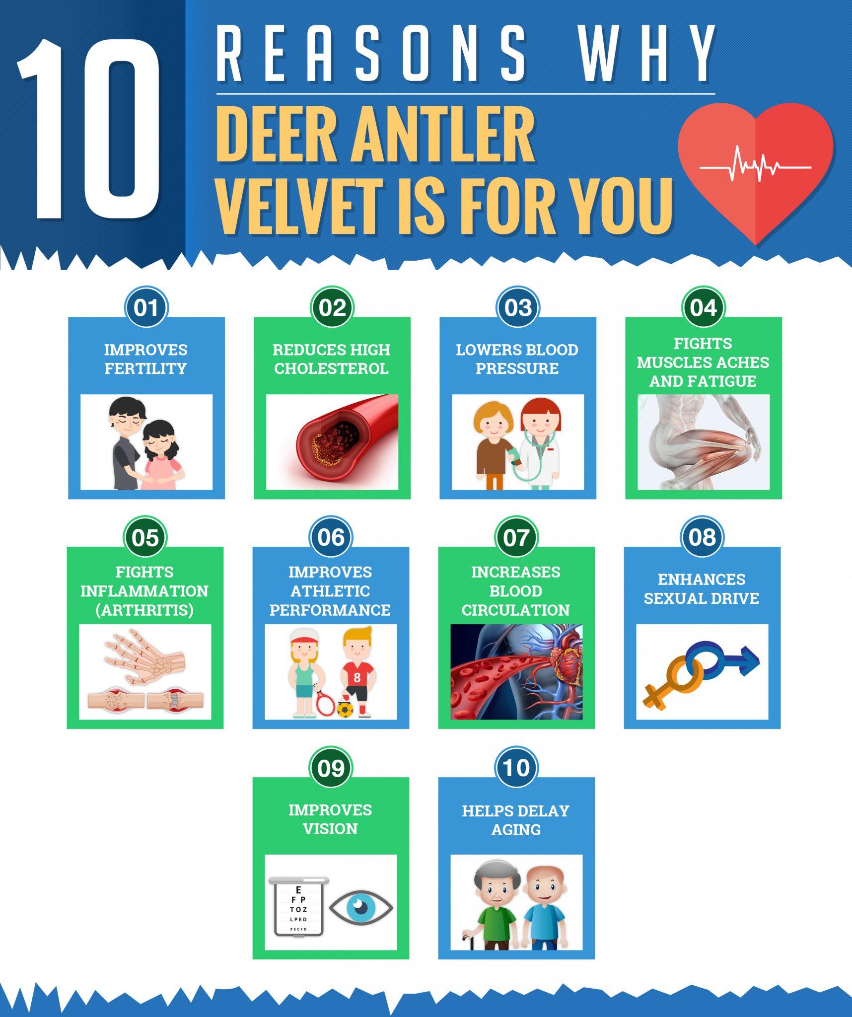 deer antler velvet health benefits